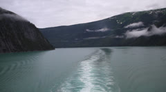 Alaska - Tracy Arm Fjord 01 Stock Footage