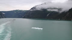 Alaska - Tracy Arm Fjord 18 Stock Footage
