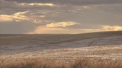 Light Snow On Wheat Field In Saskatchewan HD Video Stock Footage