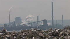 Environment and Pollution - stock footage
