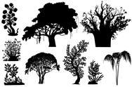 Trees of africa Stock Illustration