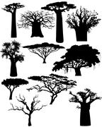 various african trees and bushes - stock illustration