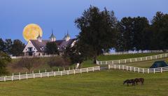 Moonrise at a horse farm Stock Photos