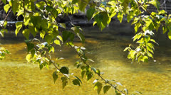 merced river reflections - stock footage