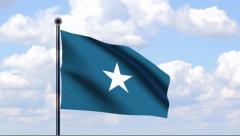 Stock Video Footage of Animated Flag of Somalia