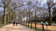 Stock Video Footage of Hyde Park