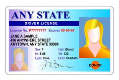 Stock Illustration of generic female state driver license