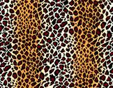 Vector. seamless jaguar skin pattern Stock Illustration