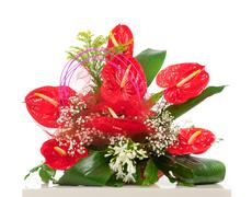 basket of red anthurium flowers - stock photo