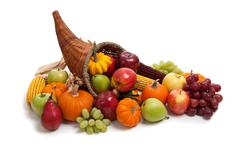 Fall cornucopia on a white back ground Stock Photos