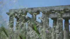 Grasses in front of an Ancient Greek Temple - 29,97FPS NTSC Stock Footage