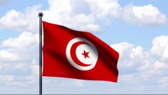 Animated Flag of Tunisia - stock footage