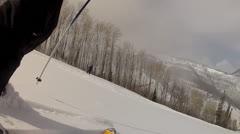 beautiful powder skiing day - stock footage
