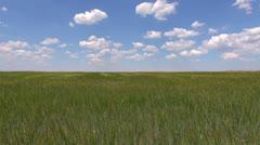 green field blue speedy sky - stock footage