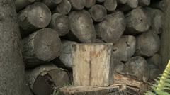 WoodChop 30 3 A Stock Footage