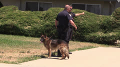 Police Action, k-9 police dog Stock Footage