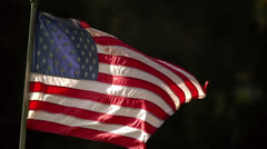 USflag-31 - stock footage