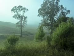 Mist receding - stock photo