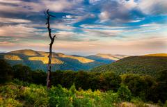 evening view of appalachians from thoroughfare overlook, along skyline drive - stock photo