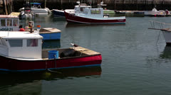 Rockport, MA Harbor Stock Footage