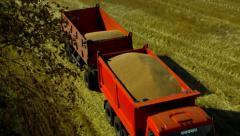 stock footage Wheat Harvest - stock footage