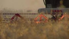 stock footage Wheat Harvest - stock footage