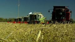 Stock footage Wheat Harvest Stock Footage