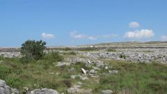 Burren Landscape 2 Stock Footage
