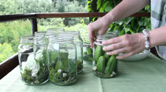 Woman preparing sour cucumbers. Preserves for winter. Stock Footage