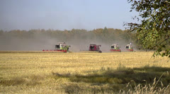 Stock Video Footage Column harvesters working in the field Stock Footage
