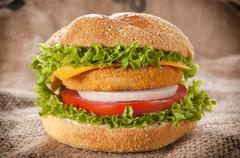 fishburger time - stock photo