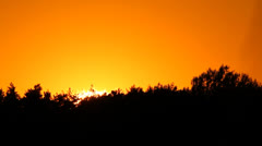 Sunset behind treetops Stock Footage