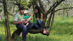 Young parents and their baby stay on blossom tree branch Stock Footage
