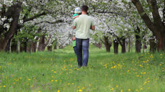 Father holding his baby walking on blossom orchard to mother  - stock footage