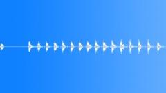 Woodpecker Pecking 1 Sound Effect