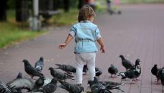 Among pigeons Stock Footage