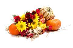 Autumn floral arrangement on white Stock Photos