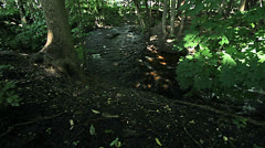 Upper Huron River - Slider shot Stock Footage