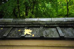 Leaf on japanese style roof Stock Photos