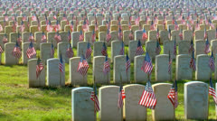 Flags displayed on military verterns gravestones Stock Footage