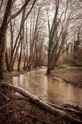 Joki Kuvituskuvat