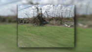 Stock Video Footage of HD drive by of damaged business, trees, Hurricane Andrew damage