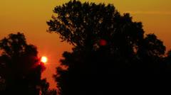 Sun and trees.Sunrise NTSC  Timelapse - stock footage