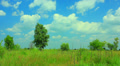 Rural landscape with  beautiful sky .NTSC  Timelapse HD Footage
