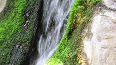 Fresh Source Water Stock Footage