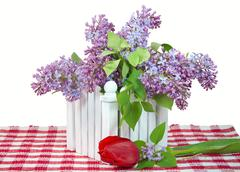 Lilac bouquet with tulip - stock photo