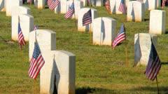 Graves tuntemattomasta sotilasta koristeltu Yhdysvaltain lippu Arkistovideo