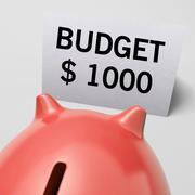 Tuhat dollaria, usd talousarvio osoittaa rajoitukset Piirros