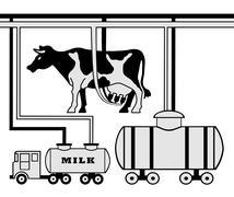manufacture of milk - stock illustration