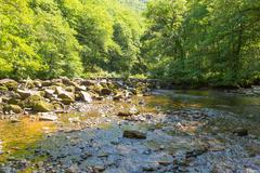 River TeignDartmoor Devon - stock photo